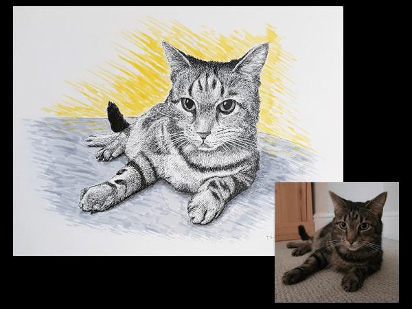 Cat ink portrait